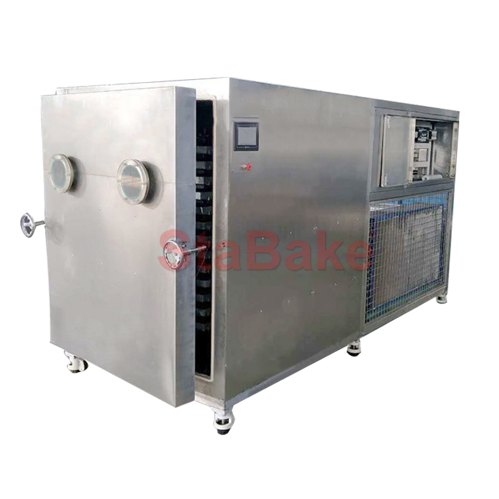 Vacuum Freeze Drying Machine